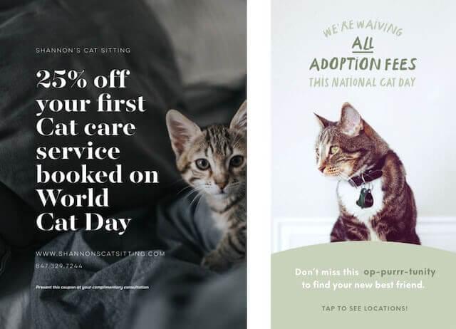 GoDaddy Studio template celebrating cat day