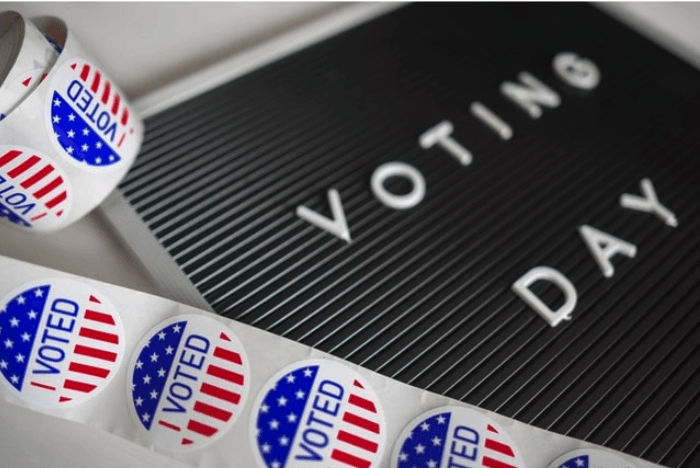 Domain Extensions Voting Day Stickers
