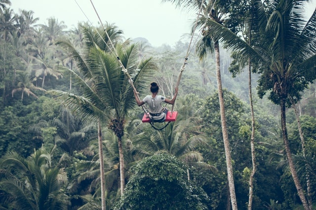 Build Confidence Swinging In Jungle