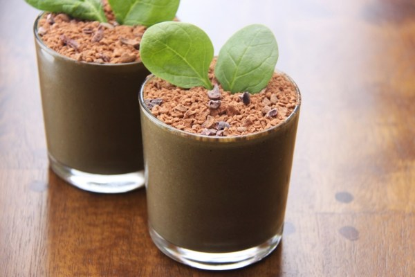 Eat Dirt Chocolate Vegan Protein Shakes Recipe