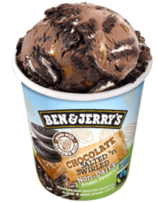 Ben & Jerry's Non-Dairy Frozen Dessert Review (All 17 Flavors!)