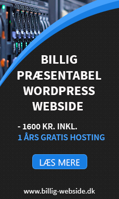 Billig Webside til 1.600 kr. incl. hosting