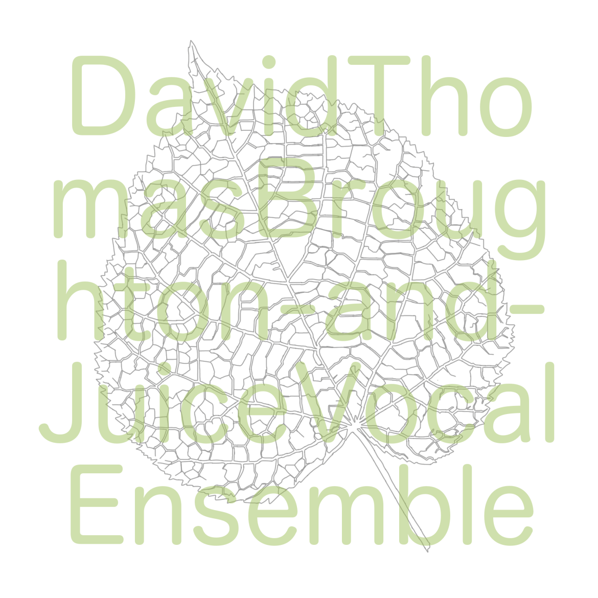 David Thomas Broughton and Juice Vocal Ensemble – Sliding the Same Way (Song, by Toad Records)