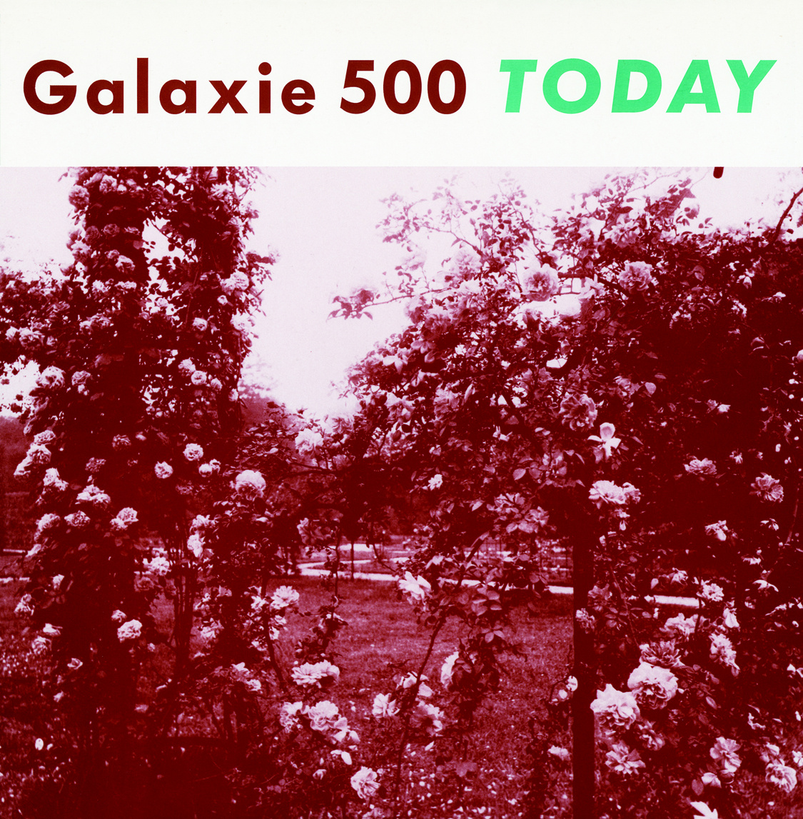 Diamonds and Rust: Galaxie 500- Today