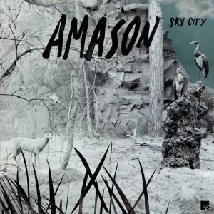 Amason Sleeve