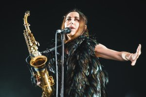 field day pj harvey