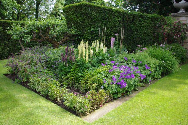 Garden Club Visit to Abbots Ripton Hall Gardens 16 Jun 2015 (16)
