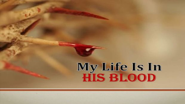 my-life-is-in-his-blood-title-pic