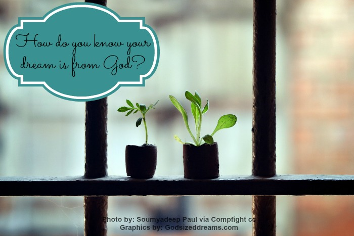 How do you know your dream is from God?