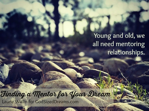 finding mentors - Laurie Wallin