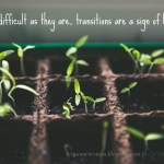 Thriving In Transition and the #DreamTogether Linkup