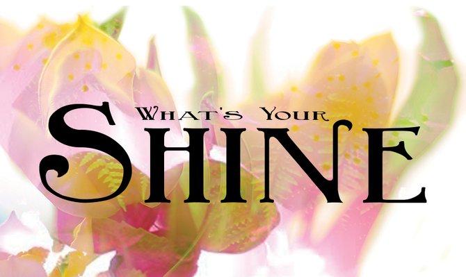 Shinespring2_t670