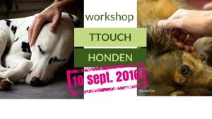 workshop TTouch voor honden 10 september 2016