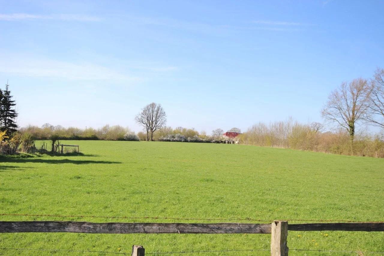 Haus Borstel Hohenraden Pinneberg Gorz Immobilien