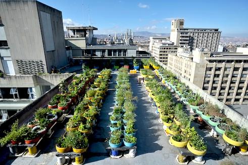 Jardín Casur en Bogotá