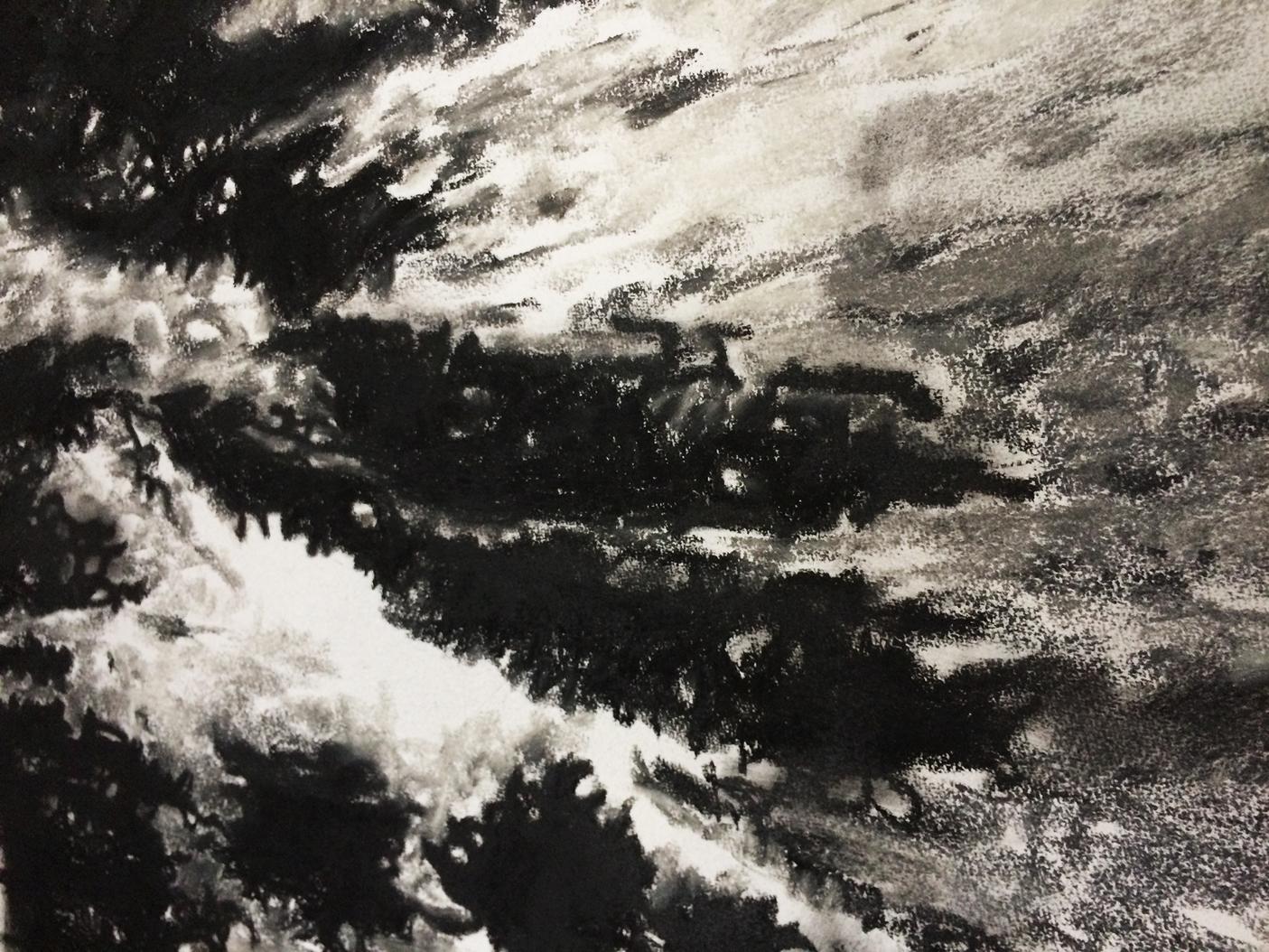 50 x 65 cm - Pastel sec