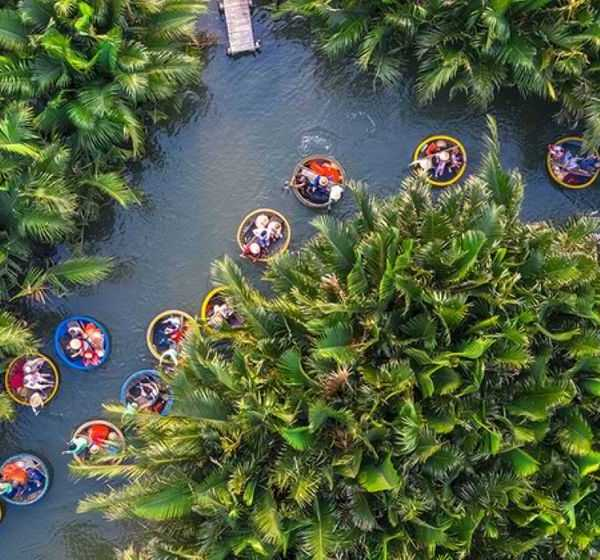 7 acres of coconut forest in Hoi An