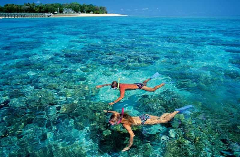 Snorkeling and Watching corals in Phu Quoc island.