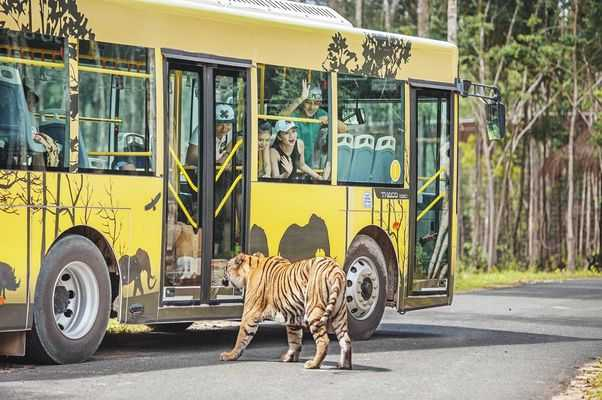 Vinpearl Safari Phu Quoc is animal care and conservation park built and designed based on the world-famous Safari model.(Vietnam Amusement Parks)