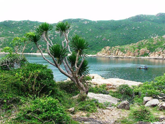 Nui Chua National Park is one of the vietnam national parks