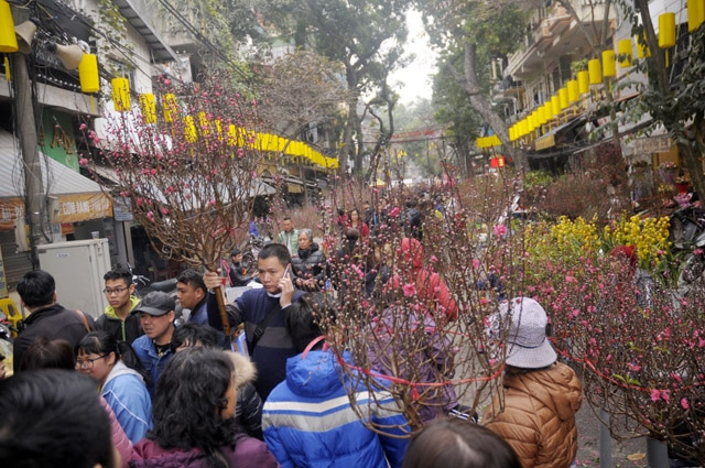 People go to Tet market not only to buy essential items on Tet holiday but also to meet each other, chat, enjoy the atmosphere of Tet bordering on Tet.