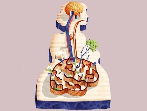 intestino-secondo-cervello