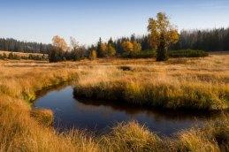Luzny creek
