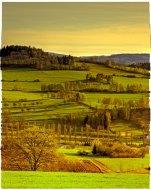 Landscape by Ckyne