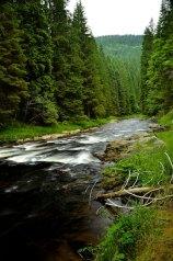 Kremelna river canyon trip