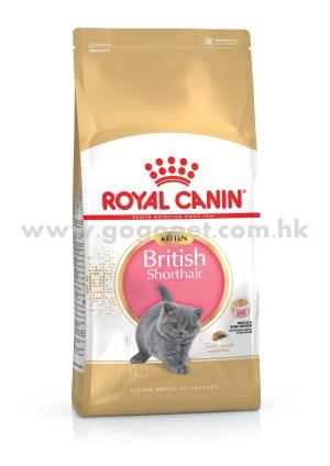 Royal Canin 法國皇家 - 英國短毛幼貓配方 10kg