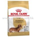 Royal Canin 法國皇家 dachshund 臘腸犬配方