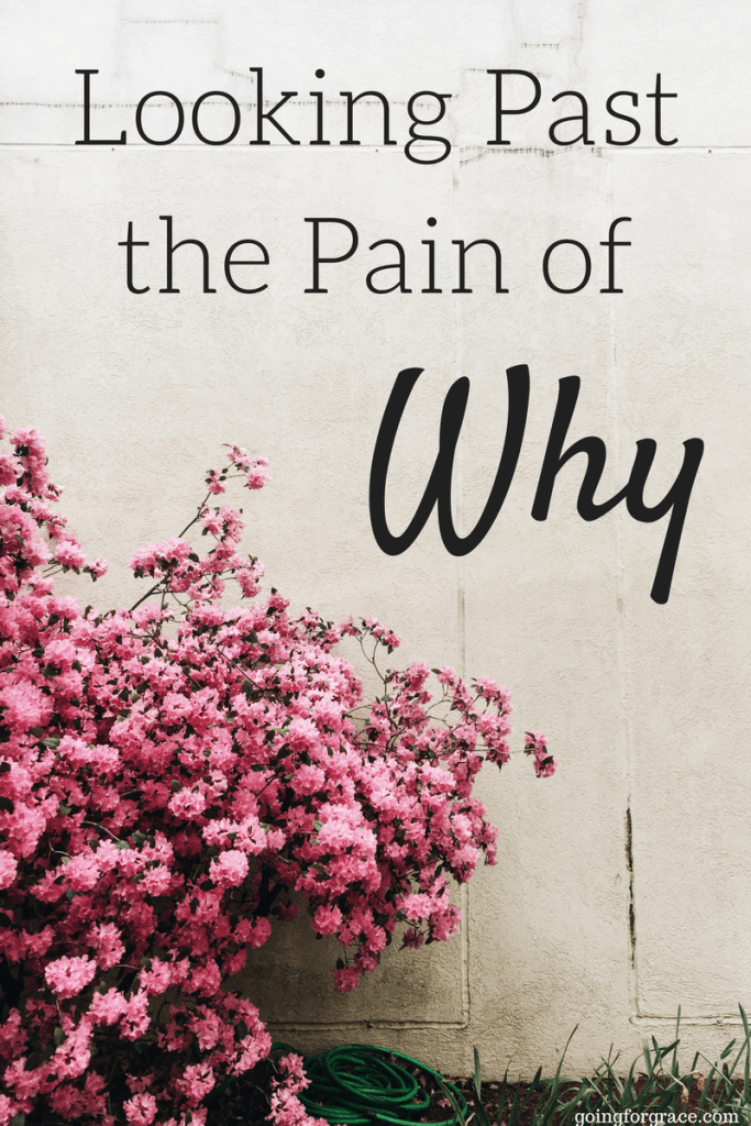 Looking Past The Pain Of Why