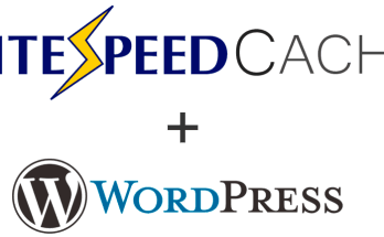 litespeed-wordpress-cache-eklentisi