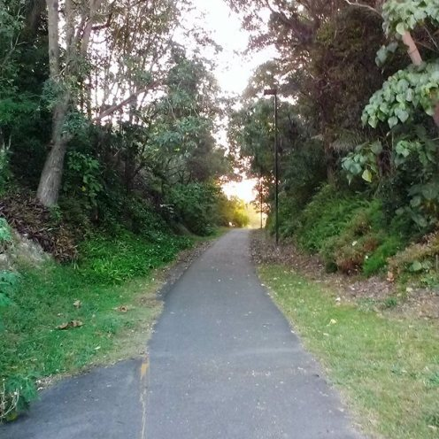 Old Railway Cutting at Coolangatta