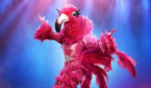 'The Masked Singer' spoiler: The Flamingo is …