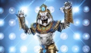 Rob Gronkowski ('The Masked Singer' White Tiger) interview after Super 9 unmasking: 'My dance moves were one of a kind'