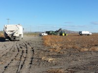 Spud trucks follow a potato harvester though a chipping potato field located on the leases near Tulelake, California.
