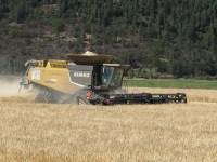 Walker Brothers' Claas Lexion 750 cutting a wheat field at the Running Y Ranch near Klamath Falls, Oregon.