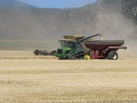 A grain harvester pours wheat into a grain cart on the Running Y Ranch.