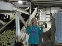 Aurora (Rory) Hill, Tricia's oldest daughter, shows off a chipping potato at Gold Dust Potato Processors' packing shed.