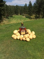 A bottle of Crown Royal nestled in a pile of chipping potatoes at Gold Dust's 15th Annual Open House Field Day Golf Scramble at the Running Y Lodge.