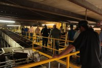 Gold Dust and Walker Farms' guests were taken on a tour of Gold Dust's processing plant near Malin, OR during the Open House Field Day.