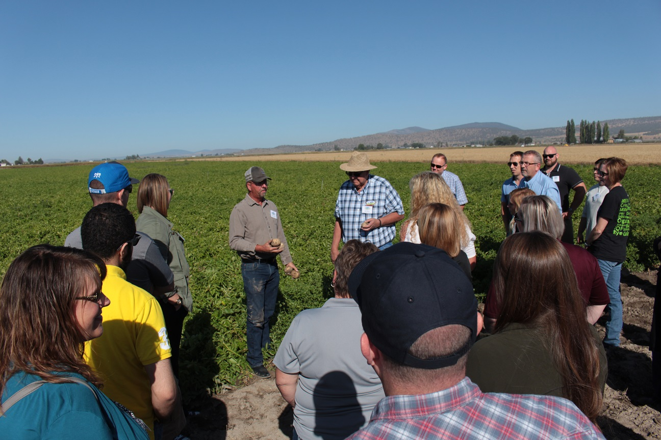 Rob Unruh showing potatoes from a field near Malin, Oregon, during Gold Dust & Walker Farms' Open House Field Day