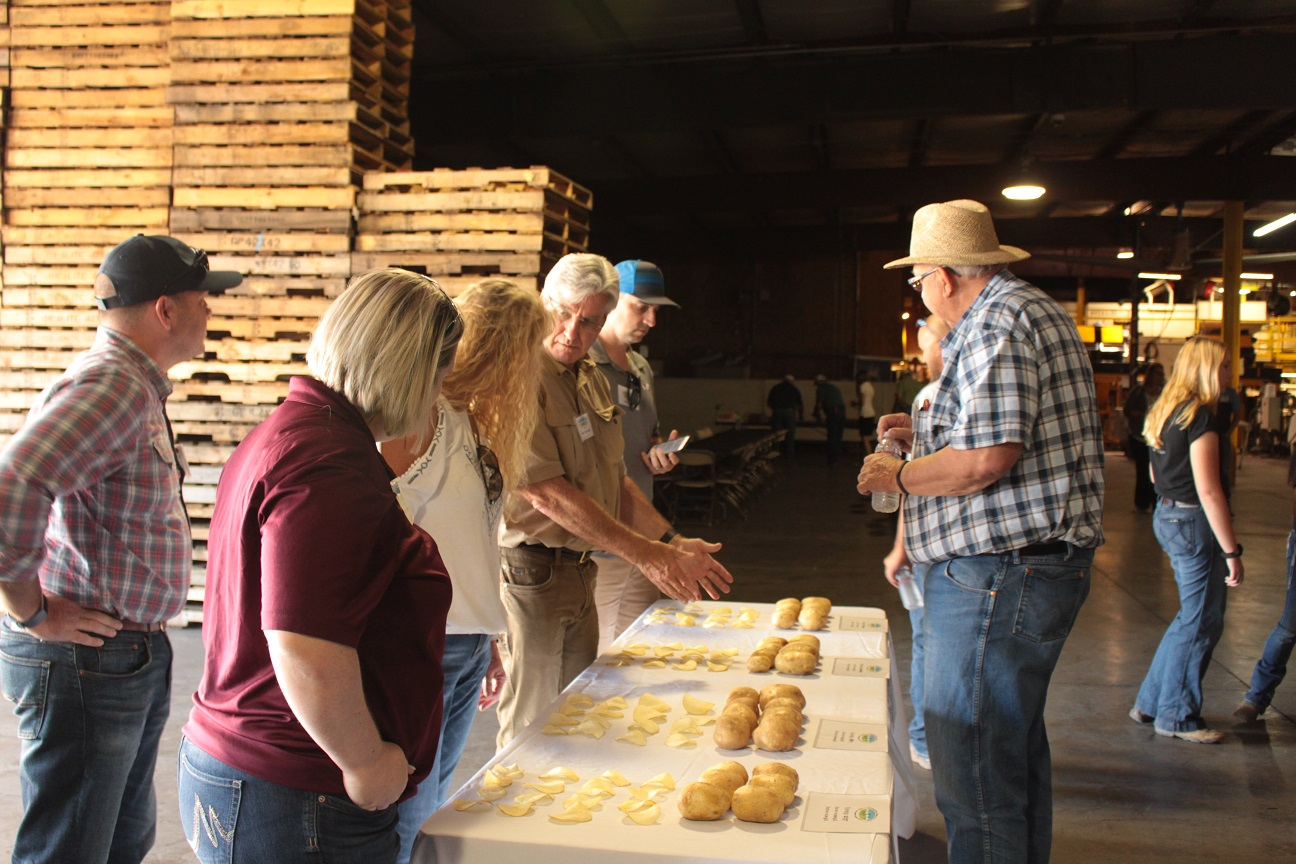 Paul Sproule educating Gold Dust & Walker Farms' guests about chipping potato varieties.