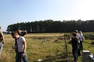 Welpen-Treffen G-Wurf 20