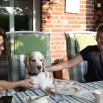 Golden-Daylight-Beagle P-Wurf 4. Woche 16