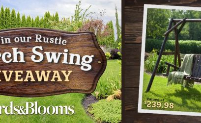 Birds & Blooms Rustic Porch Swing Giveaway