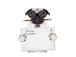 Weekly Sweepstakes Newsletter