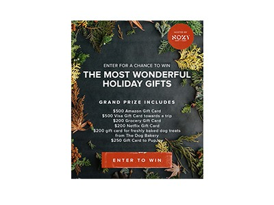 The Most Wonderful Holiday Gift Card Sweepstakes