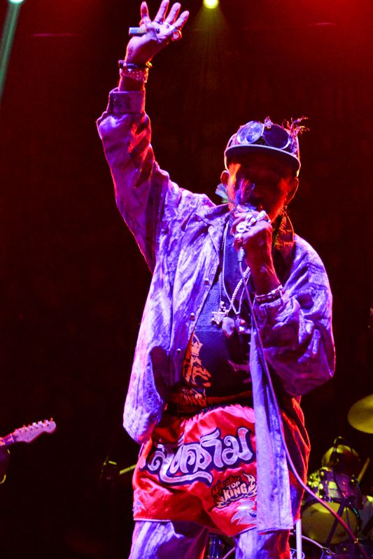 Lee Scratch Perry at Forbidden Fruit on 1st June 2013-1-11